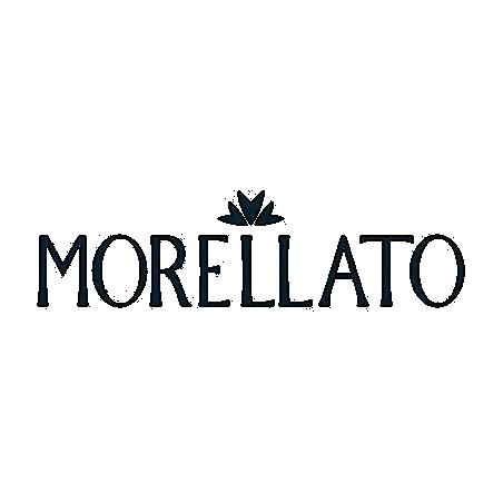 Manufacturer - Morellato